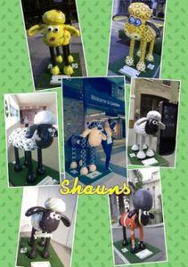 shaun1